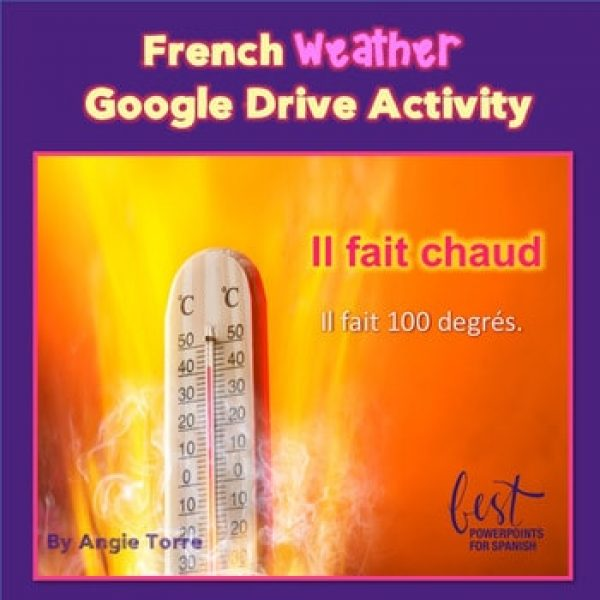 French Weather Interactive Notebook Activity