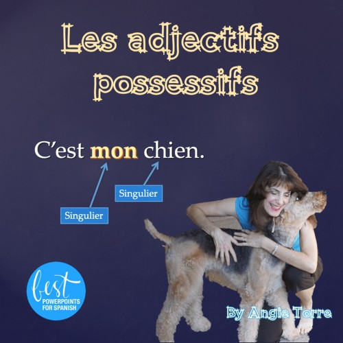 French Possessive Adjectives Les adjectifs possessifs